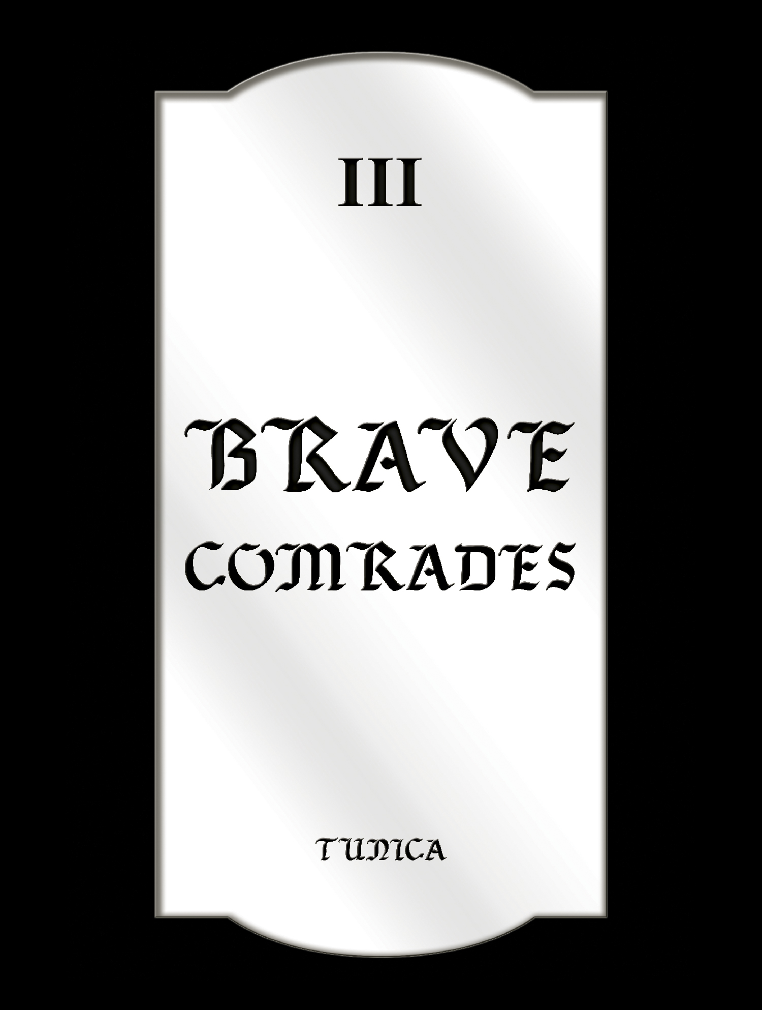 Brave Comrades, Mirrored Plexiglass, 11.48 x22.98 inches, 2016